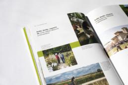 Ray Díaz Estudio. RayStudio. Design and illustration. Madrid. Valencia. Barcelona. Environment. Sustainability Sustainable design. Green things. graphic design ray diaz. Book. Editorial. CEA. Vitoria-Gasteiz